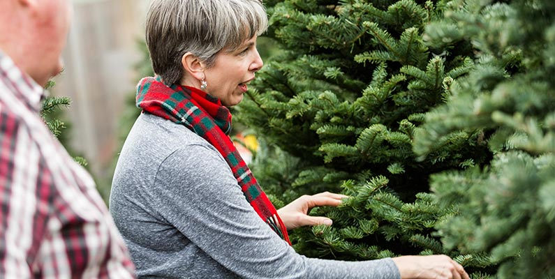 Caring For Your Real Christmas Tree