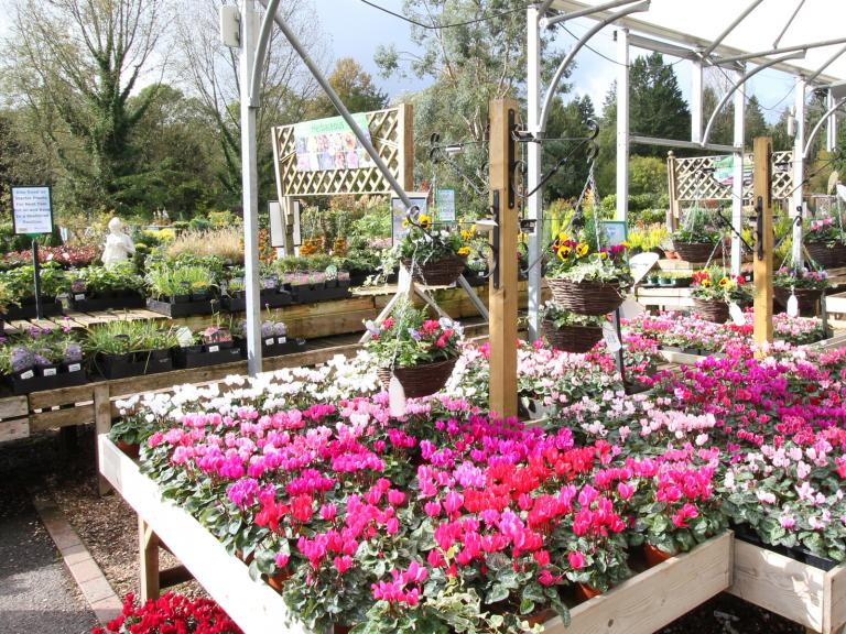 Wilton House Garden Centre