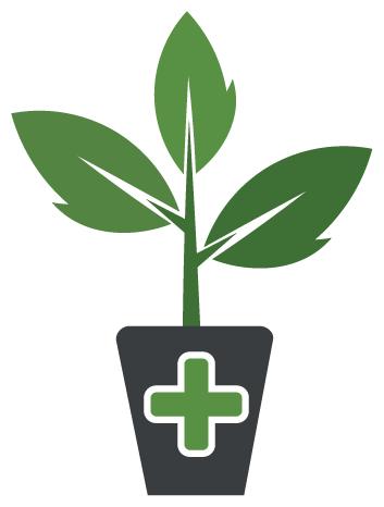 Garden Doctor Intro Copy