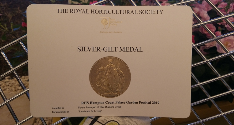 Blue Diamond win Silver Gilt at RHS Hampton