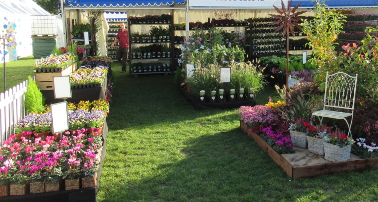 3 Shires win at Malvern Flower Show