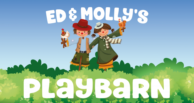 Ed & Molly's Playbarn at East Bridgford Garden & Home