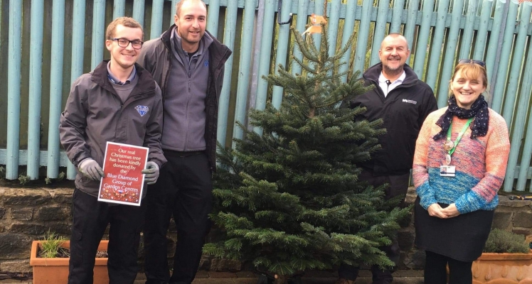 Blue Diamond Christmas Tree Donations