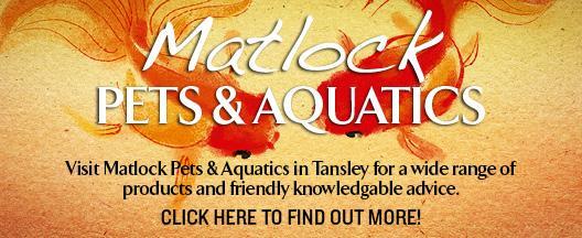 Matlock Pets & Aquatics