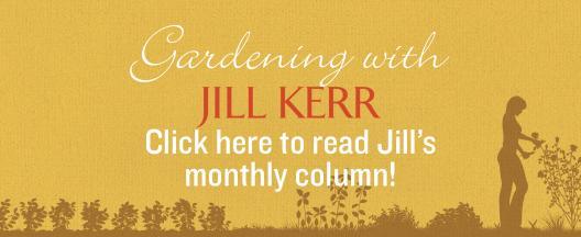 Jill Kerr's Gardening Column