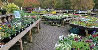 Chatsworth Garden Centre