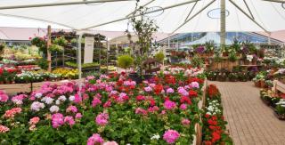 Le Friquet Home of Garden & Living