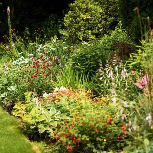 Plants at Brambridge Park
