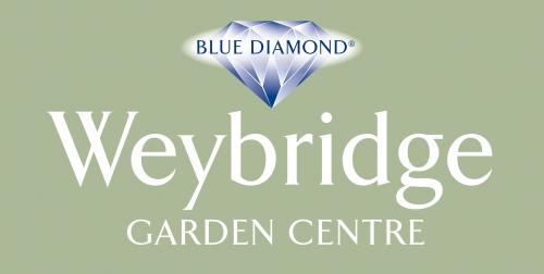 Weybridge Garden Centre